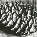 Spruce cone wood engraving