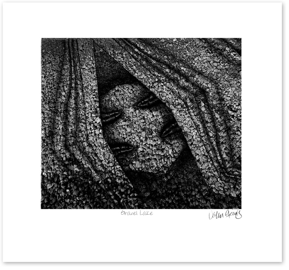Another hybrid print where I combined a wood engraving with a texture photograph