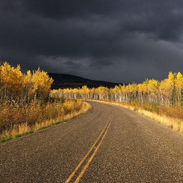 autumn colours in the Yukon